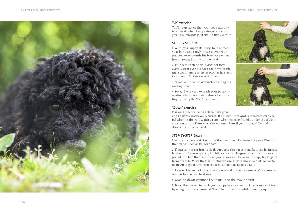 The Barbet Revealed Ch 9 p 239-239